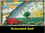 extended self