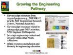 growing the engineering pathway