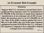an economic risk example