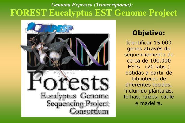 Genoma Expresso (Transcriptoma):