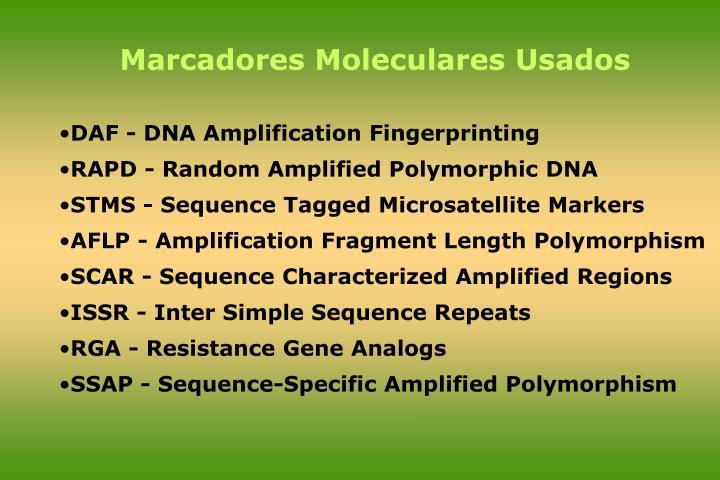 Marcadores Moleculares Usados