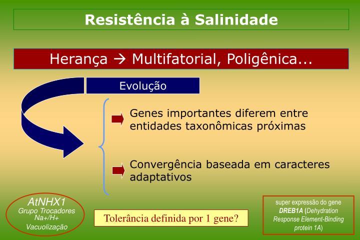 Resistência à Salinidade