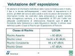 valutazione dell esposizione