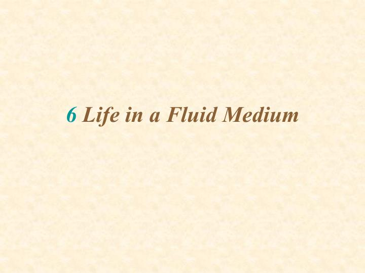6 life in a fluid medium n.