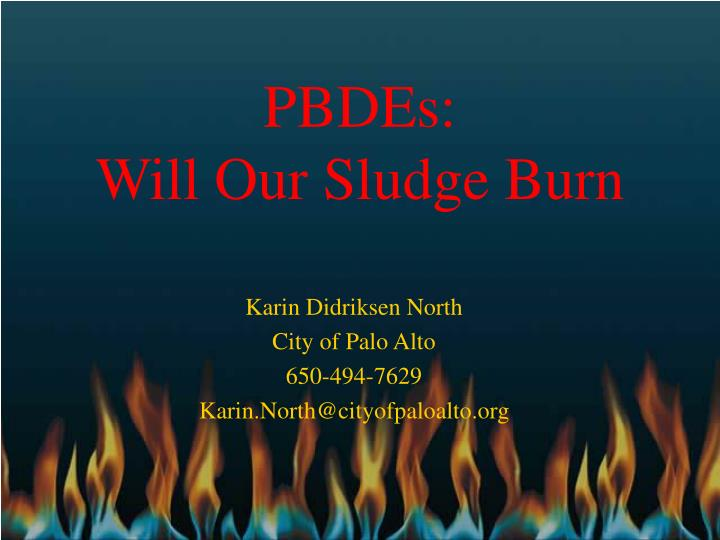 pbdes will our sludge burn n.