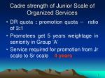 cadre strength of junior scale of organized services1