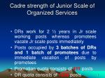 cadre strength of junior scale of organized services2