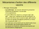 m canismes d action des diff rents vaccins