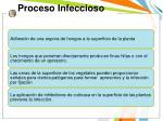 proceso infeccioso