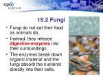 15 2 fungi1
