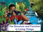 the structure and function in living things