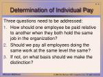determination of individual pay