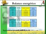 balance energ tico