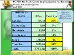topinambur costo de producci n por ha ha facultad de ciencias agrarias abril 2009