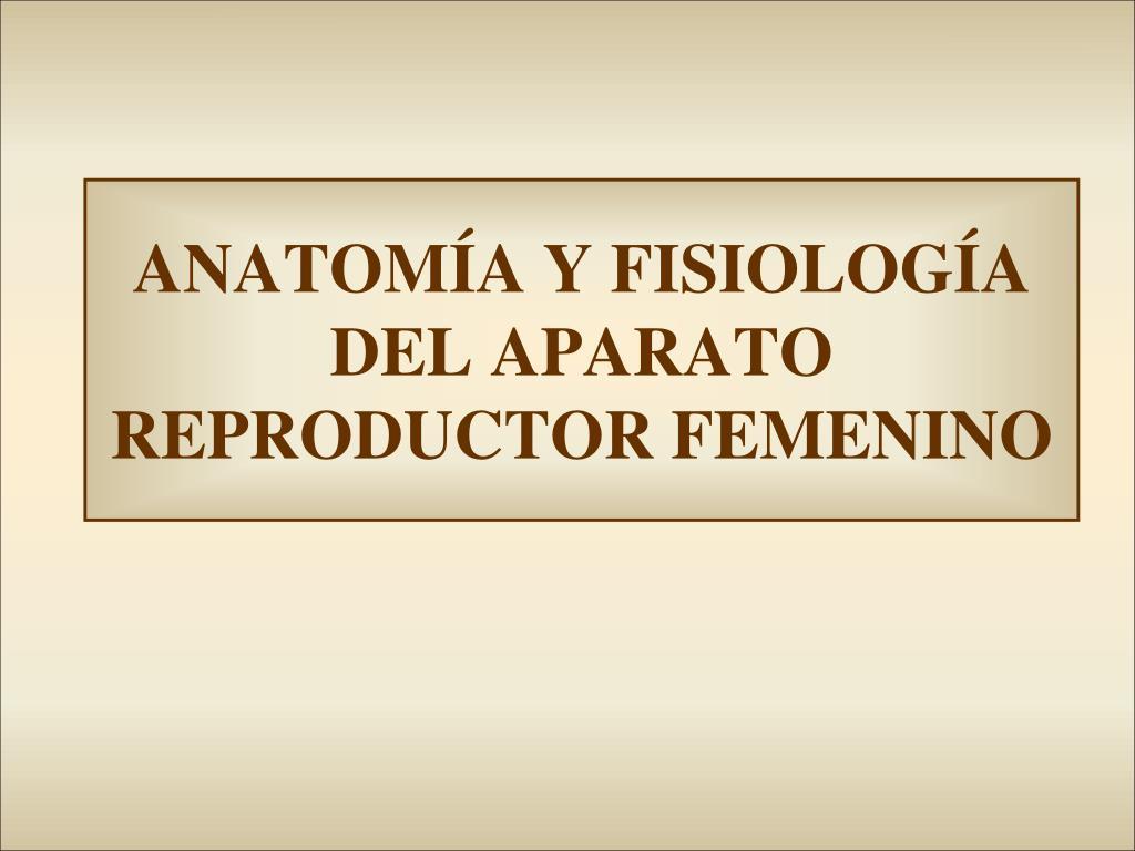 PPT - ANATOMÍA Y FISIOLOGÍA DEL APARATO REPRODUCTOR FEMENINO ...