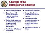 a sample of the strategic plan initiatives