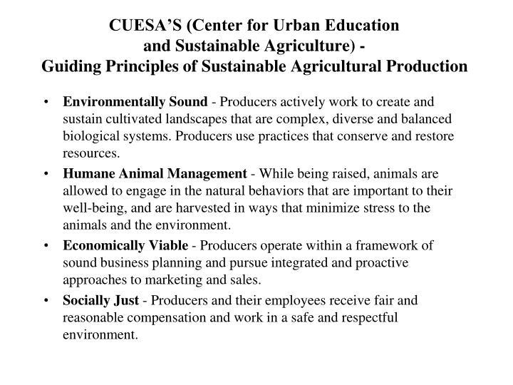 CUESA'S (Center for Urban Education