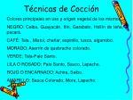 t cnicas de cocci n3