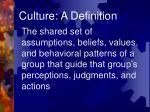 culture a definition