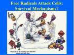 free radicals attack cells survival mechanisms