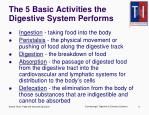the 5 basic activities the digestive system performs