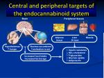 central and peripheral targets of the endocannabinoid system
