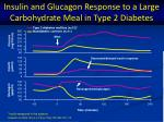 insulin and glucagon response to a large carbohydrate meal in type 2 diabetes