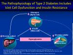 the pathophysiology of type 2 diabetes includes islet cell dysfunction and insulin resistance