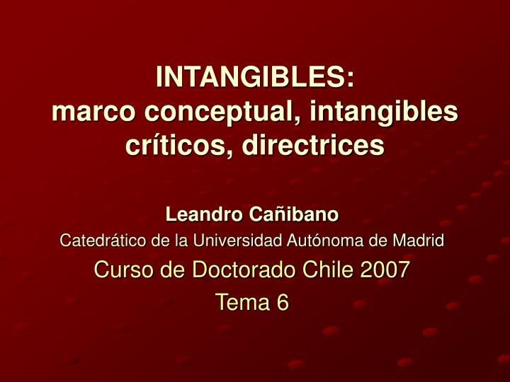 intangibles marco conceptual intangibles cr ticos directrices n.