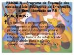 pemseis programa de execu o das medidas s cio educativas de interna o e semi liberdade do rs