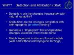 why detection and attribution d a