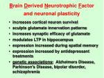b rain d erived n eurotrophic f actor and neuronal plasticity