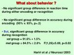 what about behavior