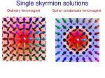 single skyrmion solutions