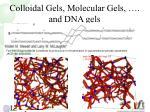 colloidal gels molecular gels and dna gels