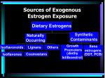sources of exogenous estrogen exposure