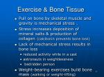 exercise bone tissue