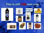 flax is still the next crop