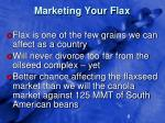 marketing your flax