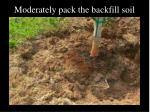 moderately pack the backfill soil