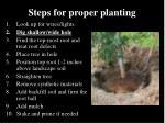 steps for proper planting1