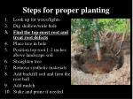 steps for proper planting2