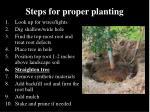 steps for proper planting5