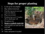 steps for proper planting6