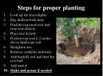 steps for proper planting9