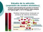 estudio de la adicci n expresi n de cerebro alcoh lico