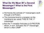 what do we mean by a second messenger what is the first messenger