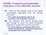 sauner investment and sustainability implications of the iiasa wec scenarios