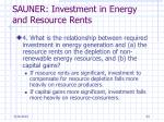 sauner investment in energy and resource rents