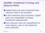 sauner investment in energy and resource rents2